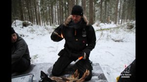 Överlevnadskurs vinter