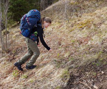 Ung kvinna övar vandringsteknik upp för brant backe med tung ryggsäck