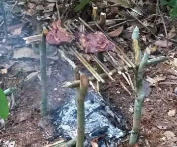 Jungle Food over fire
