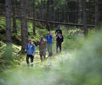 4 personer övar vandringsteknik på led i skogen